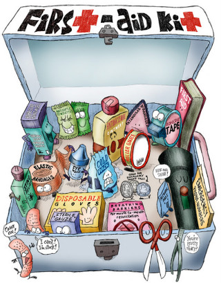 Image of the contents of a first aid kit