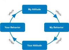 Attitude and Behavior