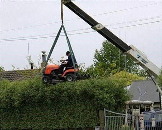 There are other ways to cut the top of your hedge, risking your life with this heavy machinery in the air is not one of them.